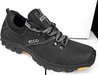 Cпортивные туфли мужские украина Ecco кожаные E0029