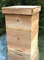 Улей для пчёл двухкорпусный Рута 230мм на 10 рамок