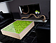 """Мебель с элементами стабилизированного мха от """"FitoRoom"""", фото 2"""