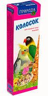 Природа Колосок для средних попугаев медовый 140г