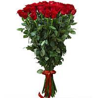 """Метровая голландская роза """"Ваше величество"""""""