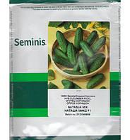 Наташа F1 (Seminis) 1000 семян - пчелоопыляемый, ранний гибрид (40-45 дней)