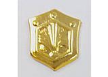 Эмблема войск РХБЗ (золотистая), фото 2