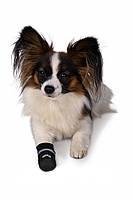 Чулок защитный для собак Trixie Walker (Трикси) L