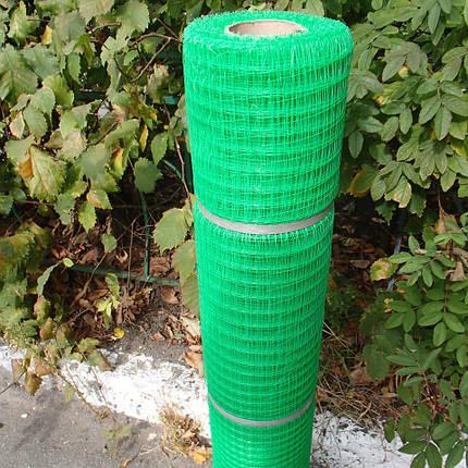 Сетка пластиковая Садовая (30х35мм) 0,5х100м, фото 2
