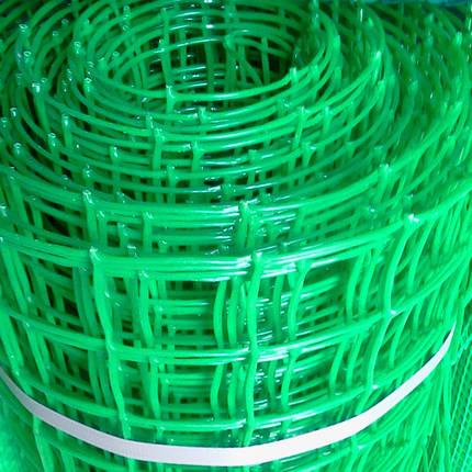 Пластиковая сетка Заборная (50x50мм) 1x20м, фото 2
