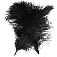 Перо страуса Черное . Размер 30см