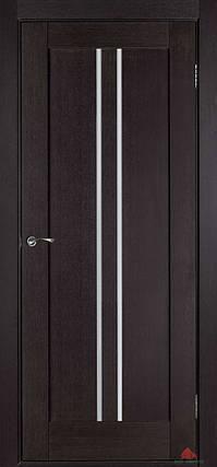 Двери Белоруссии Вертикаль У ПГ венге, фото 2