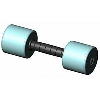 Гантель пластик/хром INTER ATLETIKA ST541-10 кг