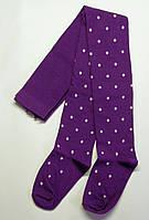 Детские колготки на девочку в горошек фиолетового цвета