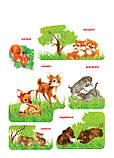 Рамки-вкладки з підслойнимо малюнком. Дикі тварини. Вундеркінд (РВ-055), фото 2