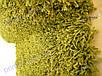 Ковер на пол с длинным ворсом, Бельгия. Super Shaggy салатовый, фото 4