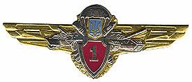 Нагрудный знак классности (1) - Военторг CamForma в Виннице