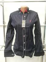 Рубашка женская молодежная (реплика) Polo ralph lauren черного цвета