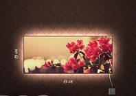 Картина с подсветкой Камелия 29x69