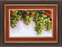 Набор для вышивки крестиком   Грозди винограда