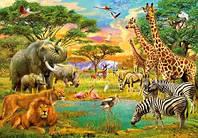 Фотообои детские  Животные Африки 366*254