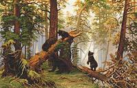 Набор для вышивки Утро в сосновом лесу