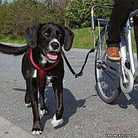 Шлея для поездок на велосипеде с собакой 80/110 Trixie Biker-Set (1287)
