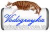 Термокружка Camry CR 6696
