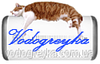 PETERHOF PH 12531-8