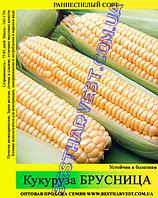 Семена кукурузы Брусница 25кг (мешок), среднеспелая
