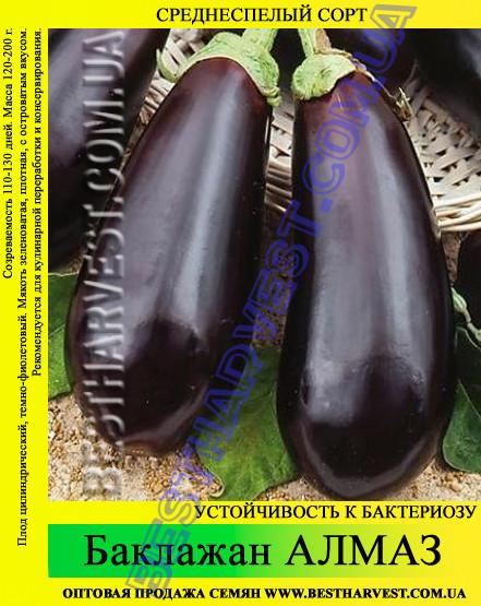 """Семена баклажана Алмаз 0.5 кг - """"Сотка"""" - все для дачников, огородников и садоводов в Одессе"""