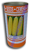 Семена кукурузы Спокуса F1, инкрустированные, 500 г