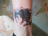 Тату крысы. Перекрытие старй татуировки.