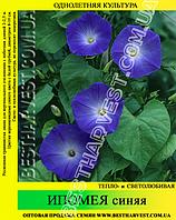 Семена Ипомея синяя 50 г