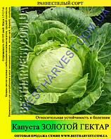 Семена капусты Золотой Гектар 10кг (мешок), белокочанная