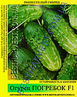 Семена огурца Погребок F1 0,5кг, раннеспелый гибрид