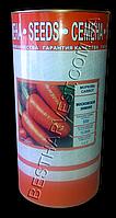 Семена моркови Московская зимняя, инкрустированные, 500 г