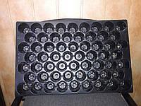 Кассеты для рассады Польша 60 ячеек, размер 35*55см