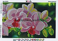 """Схема для вышивания бисером """"Цветы орхидеи"""""""
