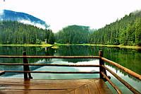 Экскурсионно-оздоровительный тур в Трускавец