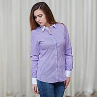 Лиловая женская рубашка в тонкую белую полоску . Разм. XS, S, M, L, XL, XXL.Davanti.