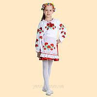 Костюм дівочий український народний традиційний. Вишиванка, юбка, фартук, фото 1