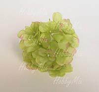 Головка гортензии салатовая, фото 1