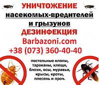 Служба уничтожения насекомых