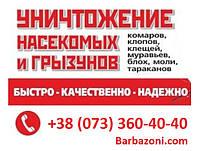 Дезслужба Киев