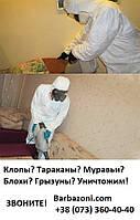 Избавим от насекомых в Киеве быстро и надежно!