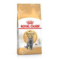 Royal Canin British Shorthair Adult, 10 кг