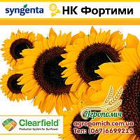 Семена подсолнечника НК ФОРТИМИ (NK FORTIMI), Syngenta