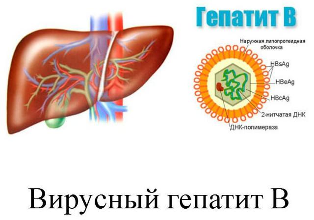 Диета при гепатите b и c