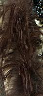 Боа страусинное однослойное.Цвет коричневый. Длинна 1,8м