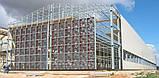 Кліткові батареї для курей несучок Facco European MAGNUM, фото 3