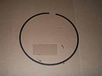 Кольцо уплотнительное 700.17.01.459 К-700 (Могилёв)