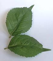 Листья гортензии 2 шт.