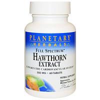 Боярышник экстракт Planetary Herbals Hawthorn Extract, 550 мг 60 таблеток